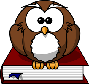 be smart bet smart as an owl